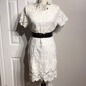 Lace Crew Casual Bodice Sheath Shift Relaxed Tired